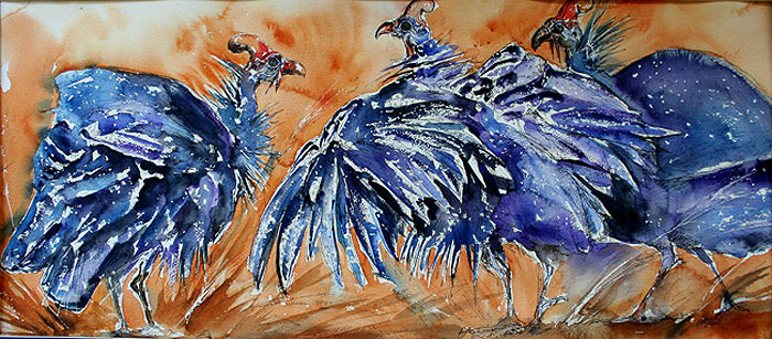 guinea fowl fluffing their wings