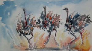 dancing ostriches
