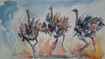 dancing ostriches