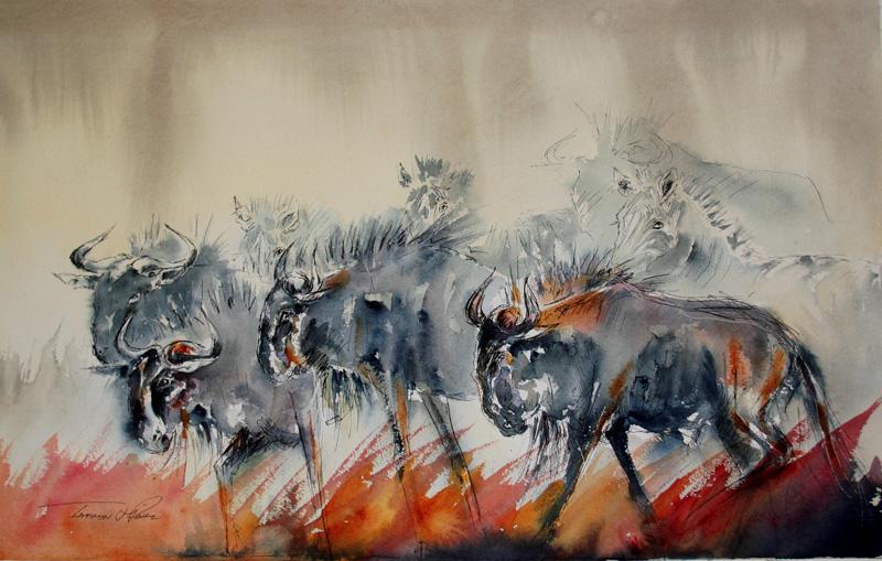 First Prize - Wildebeest Run