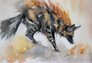 Aardwolves only eat termites! Even though they look fairly ferocious.